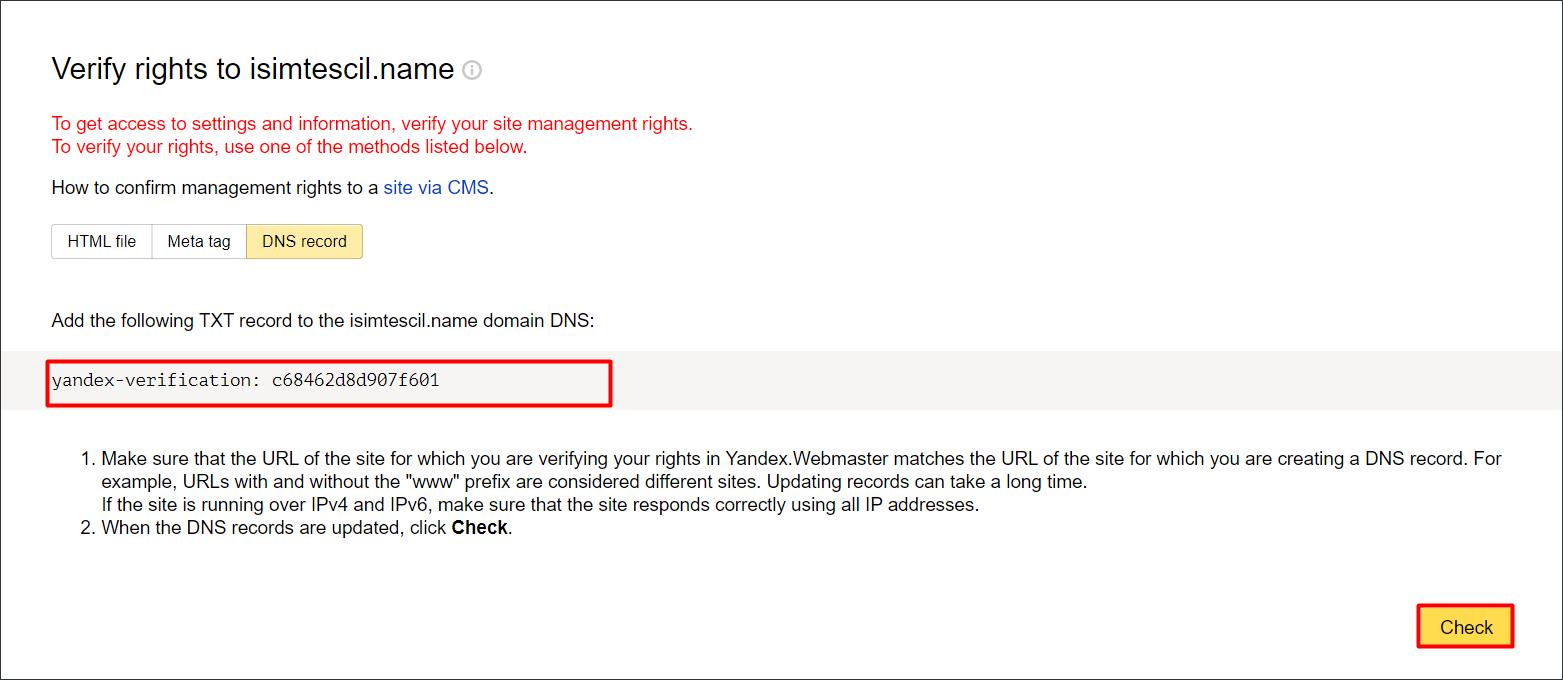DNS kaydı ile Yandex Webmaster Tools Kaydı